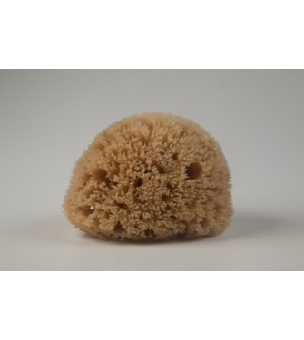 NATURAL HONEYCOMB SPONGE NATURAL COLOR