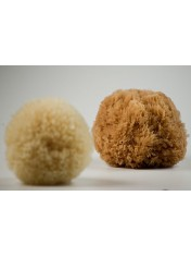 NATURAL GRASS SPONGE B BLEACHED PACKED