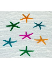 STARFISH COLORED 3-4 INCHES